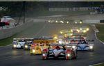 Audi_motorsport0710072256
